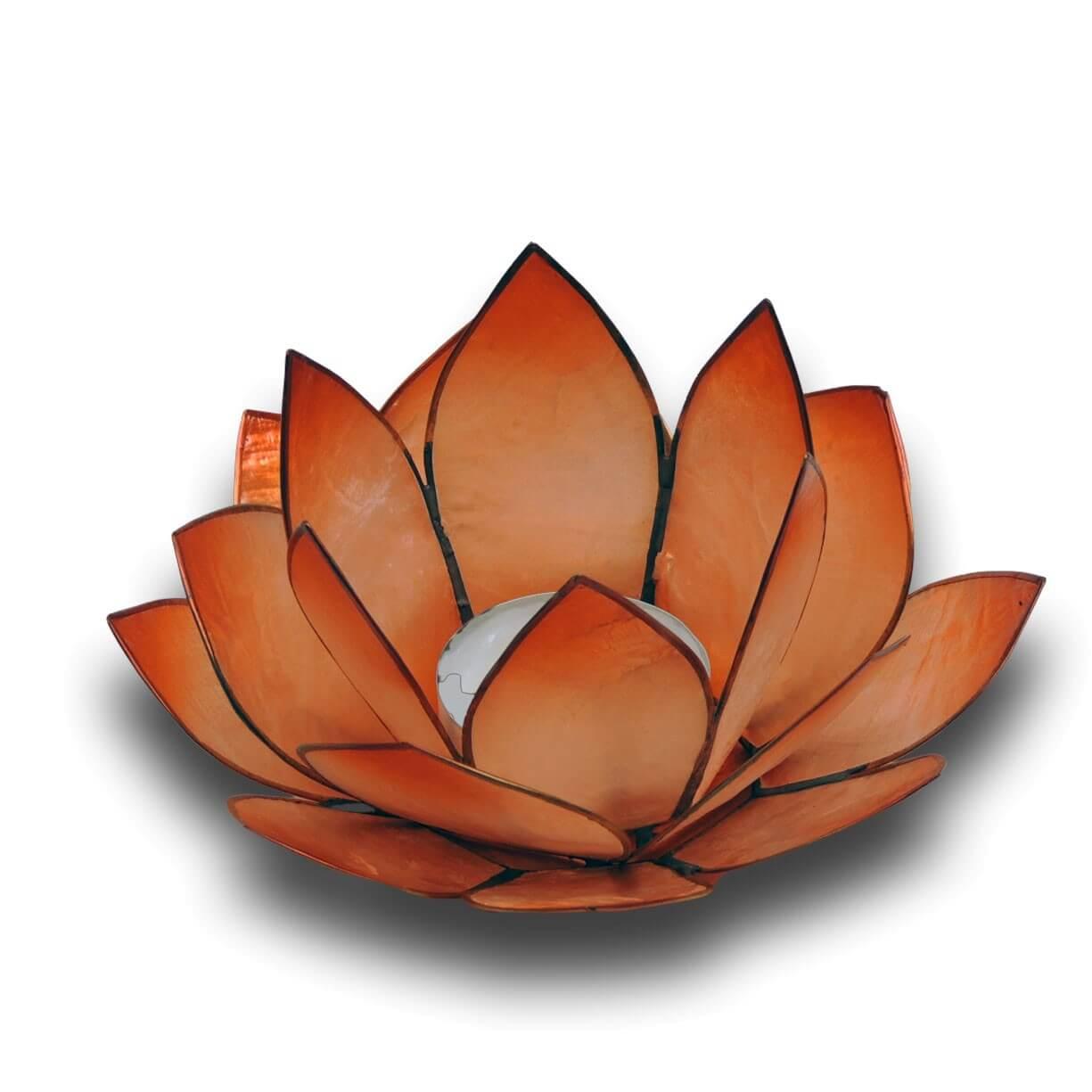 Windlicht Lotus mandarin - Capiz Muscheln - 13 x 5,5 cm - Handwerk