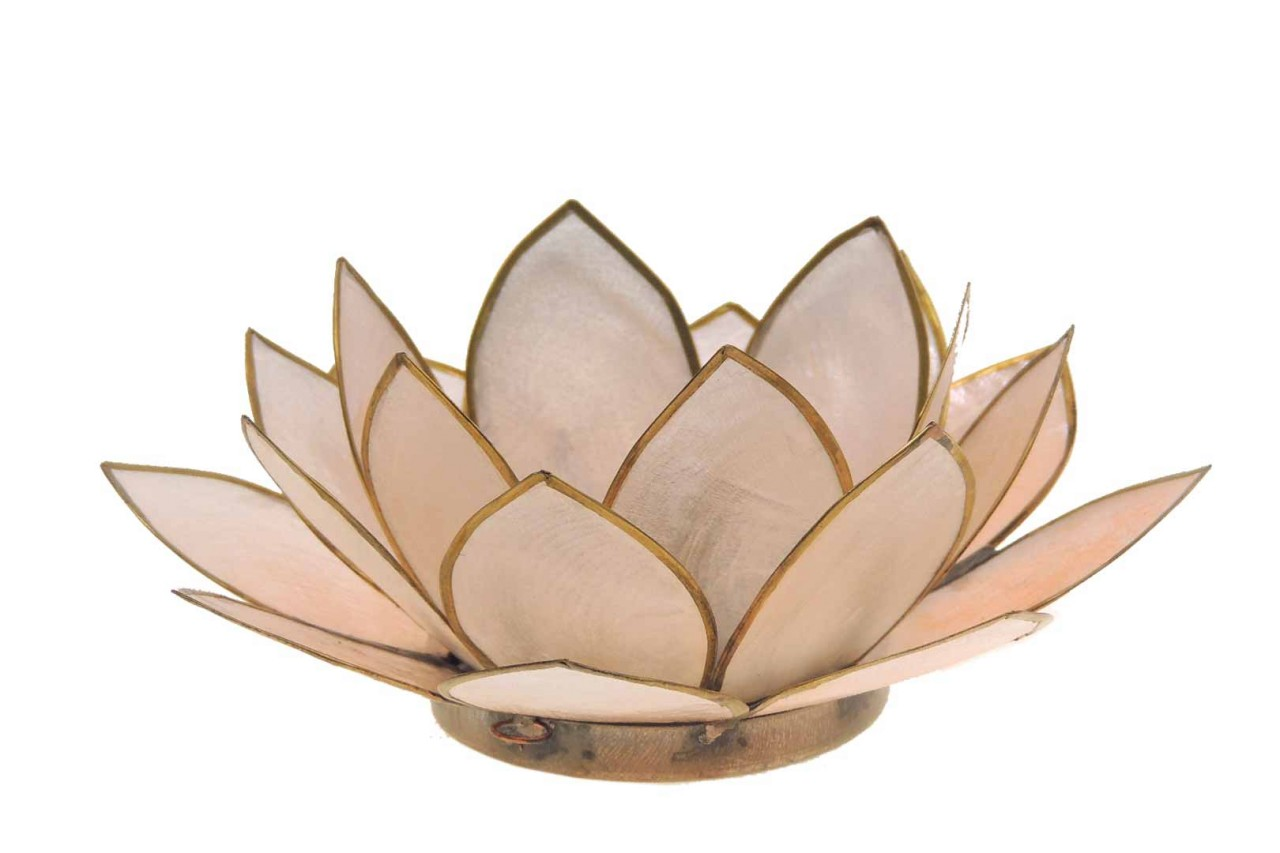 Windlicht Lotus peach Capiz Muscheln - 13 x 5,5 cm - Handwerk